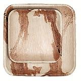 CaterEco 24 Piece Palm Leaf Square Plate Set -  12 10