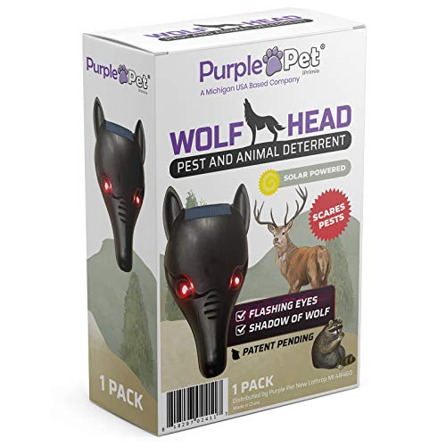 iPrimio Wolf Head with Flashing Eye Lights with Back Light to Create Silhouette (1 Pack) - Scares Deer and Repels Raccoons - Solar Powered