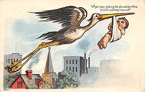 Baby Storks Postcard Stork Comic Writing on back