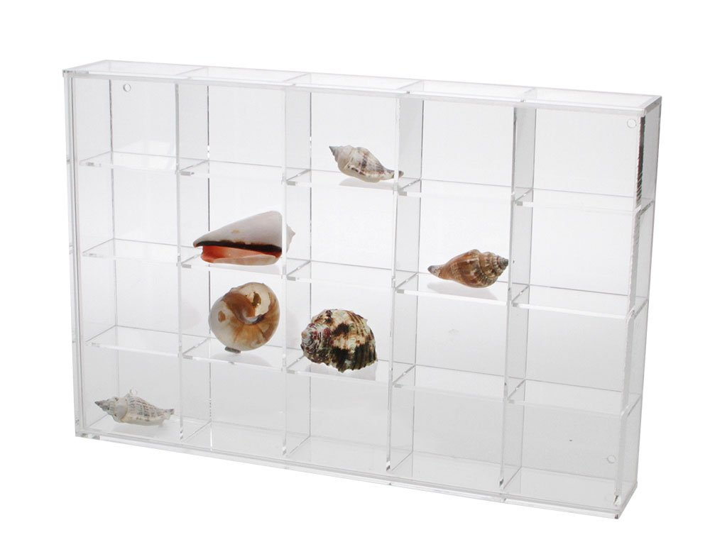 Seashell Display Case - Medium 20 Compartments by SAFE