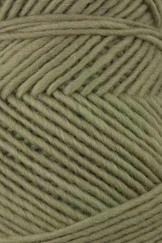 Brown Sheep - Lambs Pride Worsted Knitting Yarn - Pistachio (# 184)