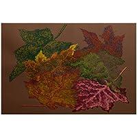 E by design RFN336BR4-35 Autumn Leaves Flower Print Rug, 3 x 5, Brown