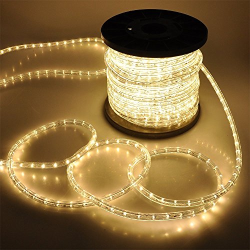 Palm Tree Clear Lights (ARKSEN Flexible 150' LED Crystal Clear PVC Tubing Rope Kit Light, Warm White)