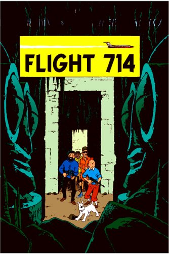 Book cover for Flight 714