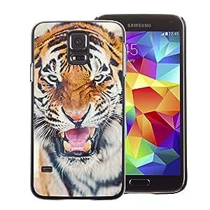 A-type Arte & diseño plástico duro Fundas Cover Cubre Hard Case Cover para Samsung Galaxy S5 (Tiger Roar Angry Cat Big Animal Africa)