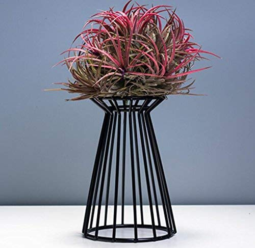 (Metal Potted Plant Stand,TFTEAM Modern Geometric Rust-Proof Wrought Iron Pot Rack Succulent Pot Rack, Home and Garden Decoration)
