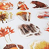 Molshine Various Special Shaped Stickers- Decals