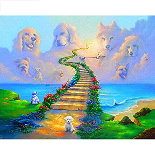 - Leezeshaw 5D DIY Diamond Painting by Number Kits Fameless Rhinestone Embroidery Paintings Pictures for Home Decor - Stairway(15.7x11.8inch/40x30cm)
