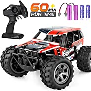 Remote Control Car, TREYWELL RC Cars Remote Control Truck, 2.4GHZ 1:18 Fast Racing Monster Car, Off Road Radio