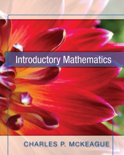 Introductory Mathematics [Paperback]