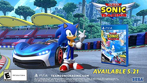 Team Sonic Racing - PlayStation 4 by SEGA (Image #13)