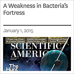 A Weakness in Bacteria's Fortress