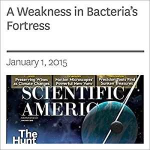 A Weakness in Bacteria's Fortress Periodical