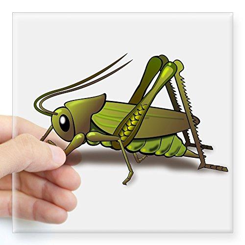 - CafePress Green Cricket Sticker Square Bumper Sticker Car Decal, 3