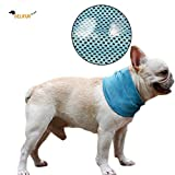 Delifur Dog Instant Cooling Bandana Pet Breathable Scarf Cats Ice Collar for Summer (S)