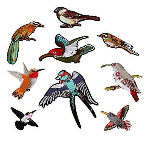 Hot Sale! AMA(TM) Pack of 10 Birds Collar Iron On Applique Sew Patch Sticker Badge DIY Embroidered Garment Decoration Craft (Multicolor)