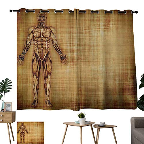 Warm Family Room Curtains Human Anatomy,Grunge Old Parchment Effect Skeleton Muscles of Human Body Retro Art Print,Light Brown 72