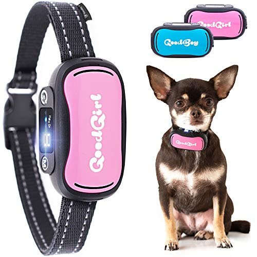 GoodBoy Small and Humane Dog Bark Collar for Little, Medium and Large Breeds - Sound or Vibration Modes Control Unwanted Barking - Rechargeable No Bark Training Device - New 2019 Sensor & Chip Upgrade -