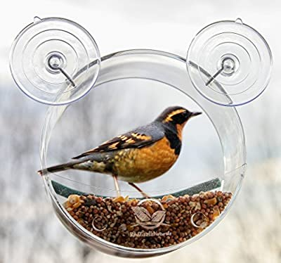 Round Window Bird Feeder: Watch Wild Birds Up Close, Great Gift for Bird Lovers & Fun Summer Activity for Kids