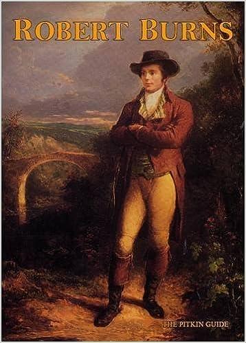 Robert Burns (Pitkin Guides) by Alan Bold (1991-09-02)