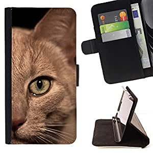 Momo Phone Case / Flip Funda de Cuero Case Cover - Gato birmano American Shorthair británico; - Huawei Ascend P8 Lite (Not for Normal P8)