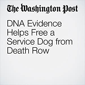 DNA Evidence Helps Free a Service Dog from Death Row
