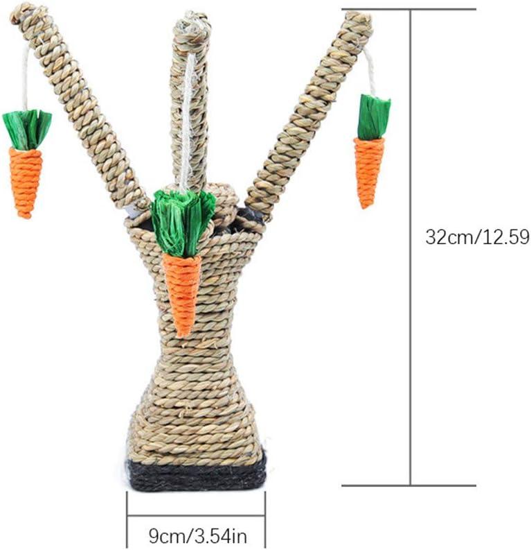 bois Adorable r/ègle en bois dessin anim/é carotte cactus chat griffe 12 cm 15 cm 18 cm marque-page outils de mesure taille unique 3pcs-cactus