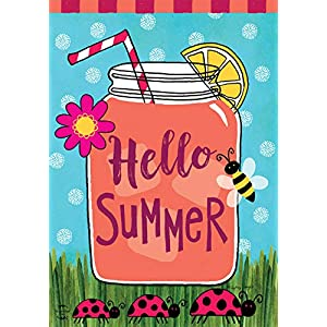 Briarwood Lane Welcome Summer Lemonade House Flag Mason Jar Ladybugs 28