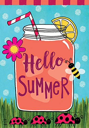 (Briarwood Lane Welcome Summer Lemonade House Flag Mason Jar Ladybugs 28