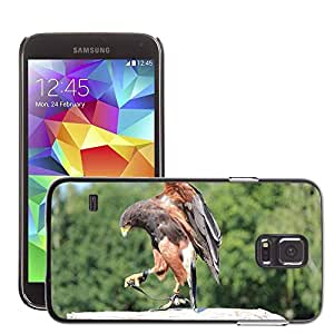 Etui Housse Coque de Protection Cover Rigide pour // M00116742 Wild Bird Raptor Bill Mundial de los // Samsung Galaxy S5 S V SV i9600 (Not Fits S5 ACTIVE)