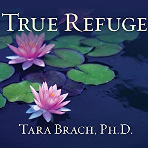 True Refuge Audiobook