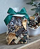 SALE~Manu Home Winter Forest PINE Potpourri ~A compelling powerful clean scent of fresh Forest Pine Potpourri with the underpinnings of Glistening Evergreen and Cedar wood ~12 oz Bag~ Made in the USA!