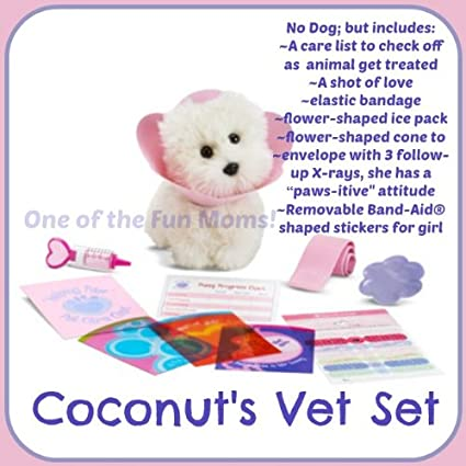 Fun Pet Animal Care – Sweet Baby Girl Cat Shelter – Pet Vet Care & Cooking  Kitchen Games For Kids