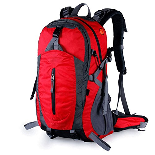 Djl バックパック - 旅行バックパックの男性と女性足で大容量防水観光アウトドアバックパック (色 : 赤)  赤 B07QV4RWRW