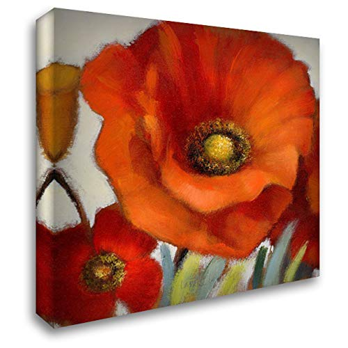 Poppy Splendor Square 1(Closeup) 28x28 Gallery Wrapped Stretched Canvas Art by Loreth, Lanie
