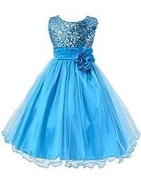 Little Girls' Sequin Mesh Tull Dress Sleeveless Flower...