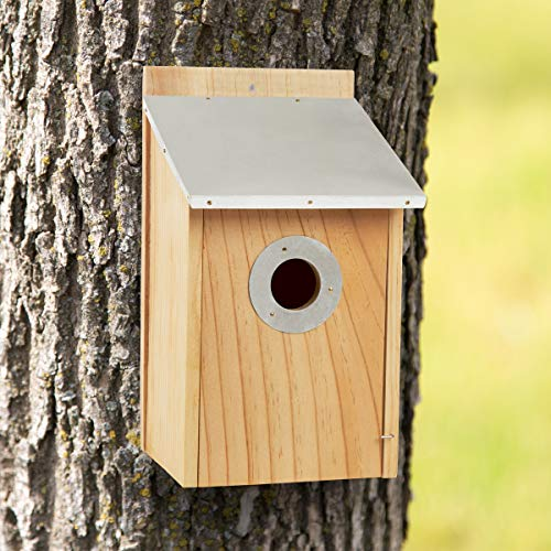 (Pure Garden 50-LG1105 Pine Bird House with Tin Roof-Outdoor, Weather Resistant Classic Wooden Nesting Box Birdhouse Attracts Bluebirds, Finch, Wren, More)
