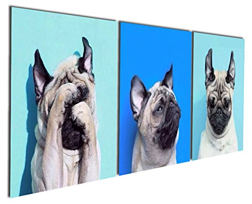 Gardenia Art - Animal World Series 13 Pug Puppy Modern Canvas Wall Art Paintings Puppy Blue Artwork for Bedroom Living Room Decoration,12x12 inch per Piece, 3 Pieces per Set, Stretched and Framed]()