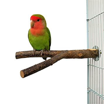 Liv-bird Soporte de Madera para Jaula de pájaros, Loros ...