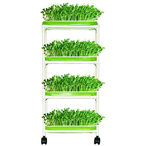 Seed Sprouter Trays with 4 Layers Shelf Soil-Free Healthy Wheatgrass Seeds Grower & Storage Trays for Garden Home -