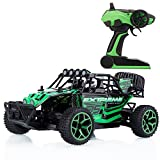 Metakoo 1/18 Scale Electric RC Car High Speed 2.4 GHz 2WD 20km/h Remote Control Off-Road Vehicle Hobby Truck, Green