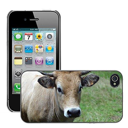 Bild Hart Handy Schwarz Schutz Case Cover Schale Etui // M00133696 Kühe Tiere Weide // Apple iPhone 4 4S 4G