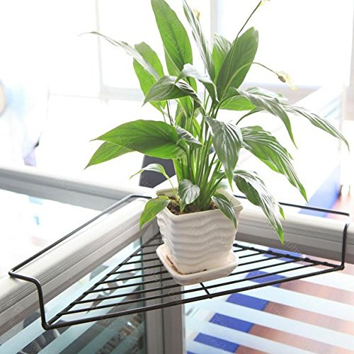 Chris-Wang Iron Wire Outdoor Corner Plant Caddy, Patio Railing Deck Shelf Holds Flower Pots and More, Space-Saving Office Cubicle Sundries Storage Rack, No Screws Required (Black) by Chris-Wang