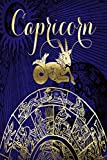 2020 Daily Planner Capricorn Symbol Astrology Zodiac Sign Horoscope 388 Pages: 2020 Planners Calendars Organizers Datebooks Appointment Books Agendas
