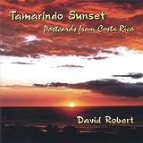 Tamarindo Sunset (Postcards from Costa Rica)