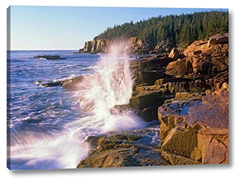 (Atlantic Coast Near Thunder Hole, Acadia National Park, Maine by Tim Fitzharris - 24