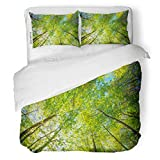 SanChic Duvet Cover Set Spring Sun Shining Through Canopy Tall Trees Woods Sunlight in Forest Summer Nature Upper Branches Decorative Bedding Set Pillow Sham Twin Size