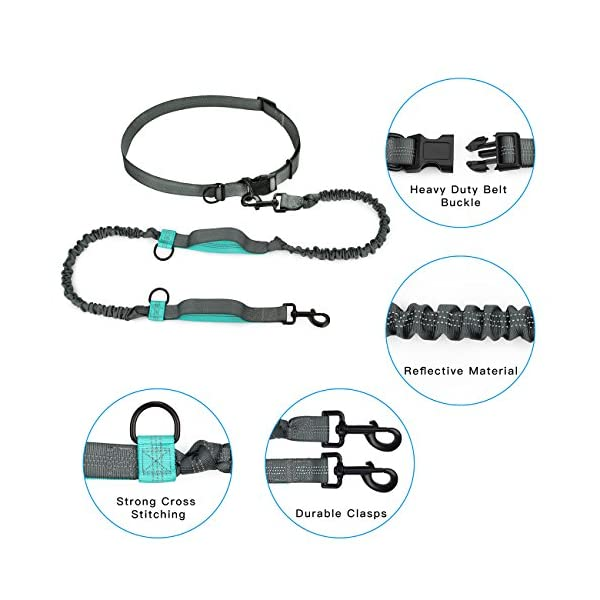 SHINE HAI Retractable Hands Free Dog Leash with Dual Bungees for Dogs up to 150lbs, Adjustable Waist Belt, Reflective Stitching Leash for Running Walking Hiking Jogging Biking 5