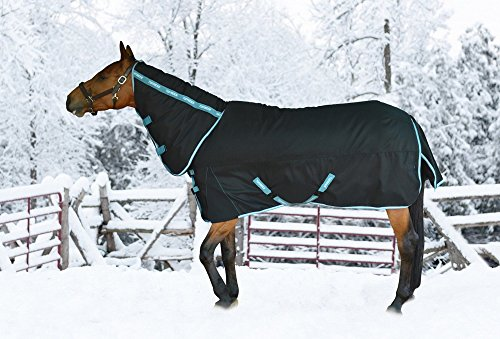 TuffRider Bonum 1200D Ripstop 360g Medium Weight Turnout Blanket with Combo Neck (Medium Weight Turnout)