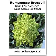 Romanesco Broccoli (Brassica oleracea) 0.25g approx. 50 Seeds. 1g, 5g (0.2g (approx. 50 Seeds))